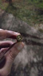 Foto da bala disparada