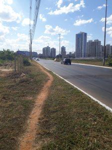 Avenida Sibipiruna