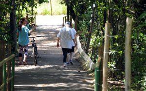 Pessoas caminham no Parque Ecológico de Águas Claras — Foto: Gabriel Jabur/Agência Brasília