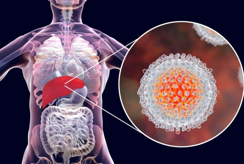 hepatite_c-1